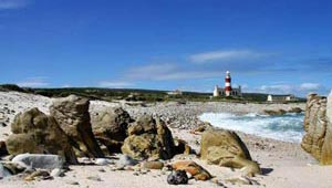 western cape garden route guided tour 11