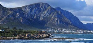 western cape garden route guided tour 12