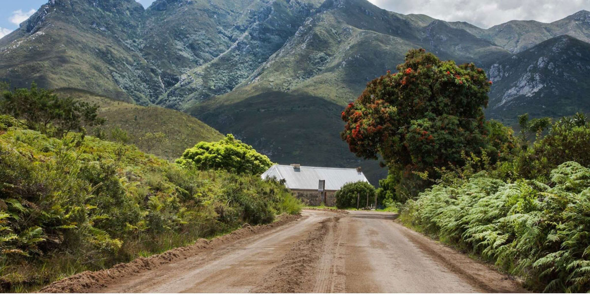 western cape garden route guided tour 19