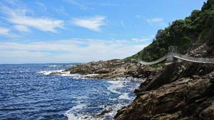 western cape garden route guided tour 6